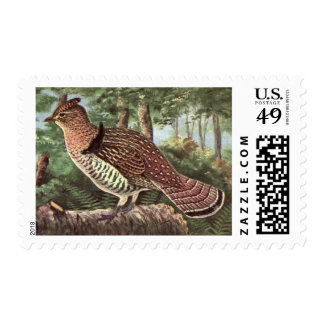 Classic Drawing of a Ruffed Grouse Postage