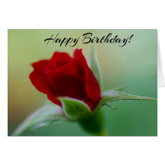 Classic Elegance Red Rose Birthday Card