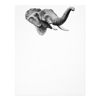 Classic Elephant Letterhead