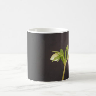 Classic flower mug Hellebore