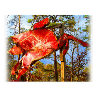 Classic Flying Horse Sign Postcard