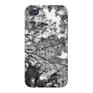 Classic Forrest iPhone 4 Case