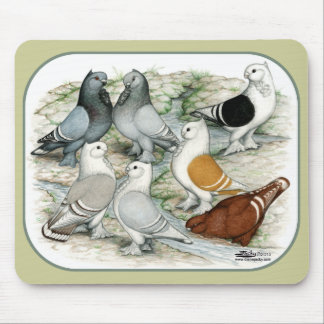 Classic Frill Barred Pigeons Mouse Pad
