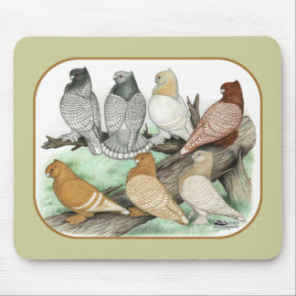 Classic Frill Pigeons Blondinettes Mouse Pad