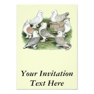 Classic Frill Pigeons Card