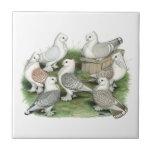 Classic Frill Pigeons Ceramic Tile