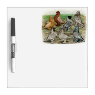 Classic Frill Pigeons Laced Blondinettes Dry-Erase Whiteboard