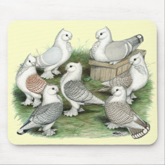 Classic Frill Pigeons Mouse Pad