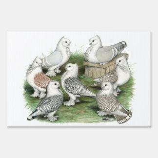 Classic Frill Pigeons Yard Sign