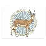 Classic Gazelle Post Card