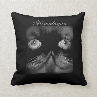CLASSIC HIMALAYAN CAT DECORATIVE PILLOW