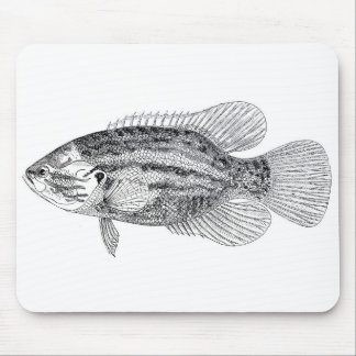 Classic Marine Etching - Red Spotted Sunfish Mouse Pad
