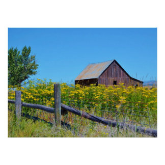 CLASSIC OLD BARN SURROUNDED BY YELLOW WILDFLOWERS POSTER