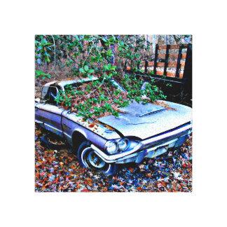 Classic Old Junk Yard Thunderbird Canvas Print
