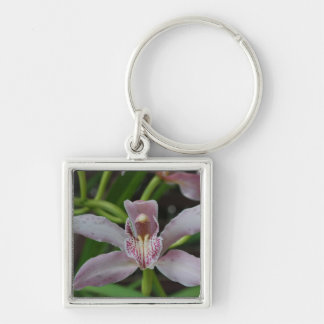 Classic Orchid Key Chains