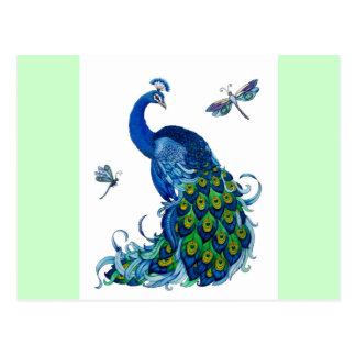 Classic Peacock and Dragonfly Design Postcard