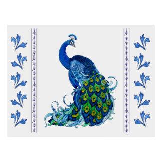 Classic Peacock Design Postcard