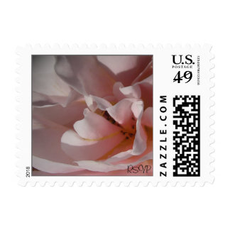 Classic Pink Rose Small Wedding Postage