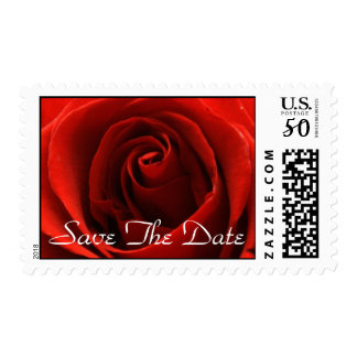 Classic Red Rose Postage Stamp