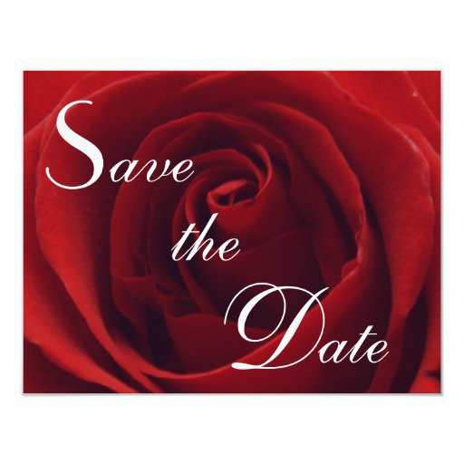 Classic Red Rose Save the Date Wedding Invitation