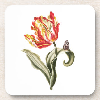 Classic Red Tulip Flower and Butterfly Still Life Drink Coaster