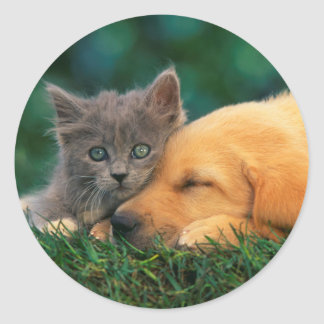 Classic Round Sticker, Glossy Cute cat and dog Classic Round Sticker