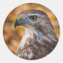 Classic Round Sticker, Glossy Hawk Profile