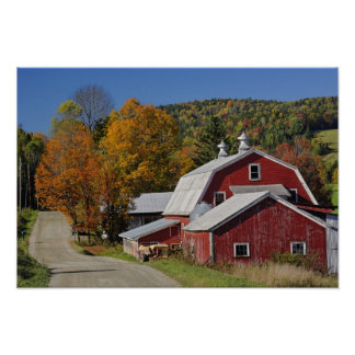 Classic rural barn and road, White Mountain Poster