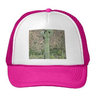 Classic Saguaro Trucker Hat