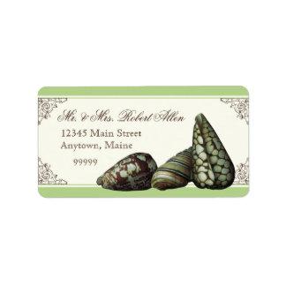 Classic Shells Green - Return Address Labels