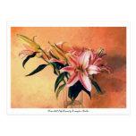 Classic still life flowers postcard
