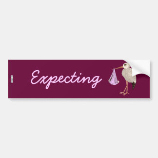 Classic Stork (Pink) (Baby Shower) Bumper Sticker