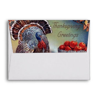 Classic Turkey and Bowl of Apples Envelope