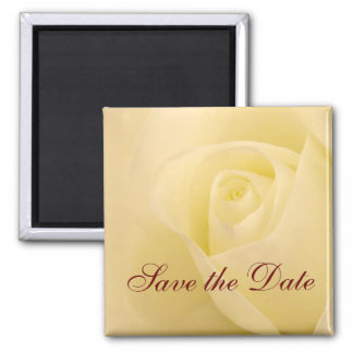Classic white bridal rose save the date 2 inch square magnet