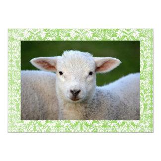 "Classic White Lamb Easter Greetings 5"" X 7"" Invitation Card"