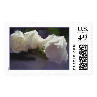 """""""Classic White"""" Series - R16A Postage"""