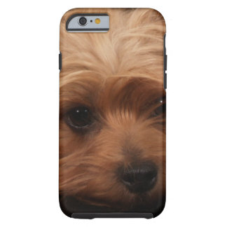 Classic Yorkie Pouty Face iPhone 6 Case