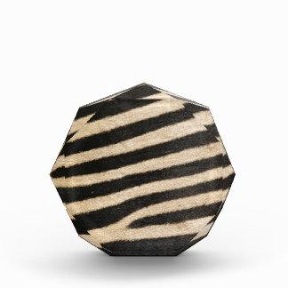 Classic zebra print. PJ. Awards