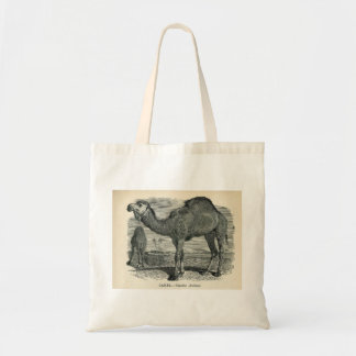 Classic Zoological Etching - Arabian Camel Tote Bag