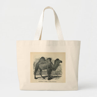 Classic Zoological Etching - Bactrian Camel Canvas Bags