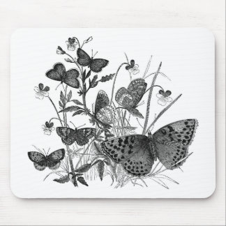 Classic Zoological Etching - Butterflies Mouse Pad