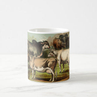 Classic Zoological Etching - Cattle Classic White Coffee Mug