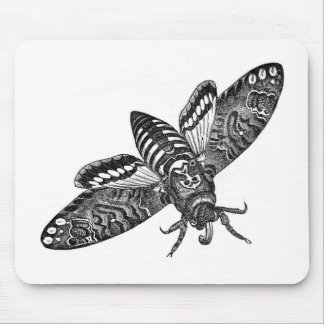 Classic Zoological Etching - Death's Head Moth Mouse Pad