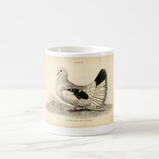 Classic Zoological Etching - Dove Classic White Coffee Mug