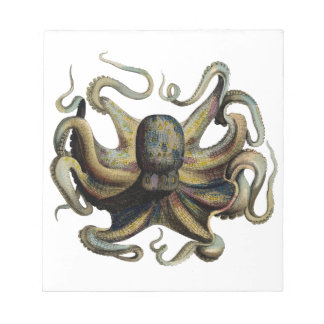 Classic Zoological Etching - Grumpy Octopus Note Pad