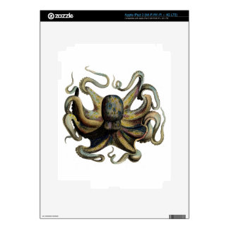 Classic Zoological Etching - Grumpy Octopus Skin For iPad 3