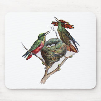 Classic Zoological Etching - Hummingbird Mouse Pad