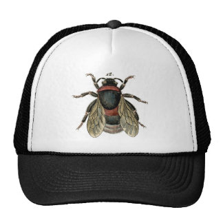 Classic Zoological Etching of a Bumble Bee Trucker Hat