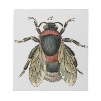 Classic Zoological Etching of a Bumble Bee Notepad