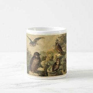 Classic Zoological Etching - Owls Classic White Coffee Mug